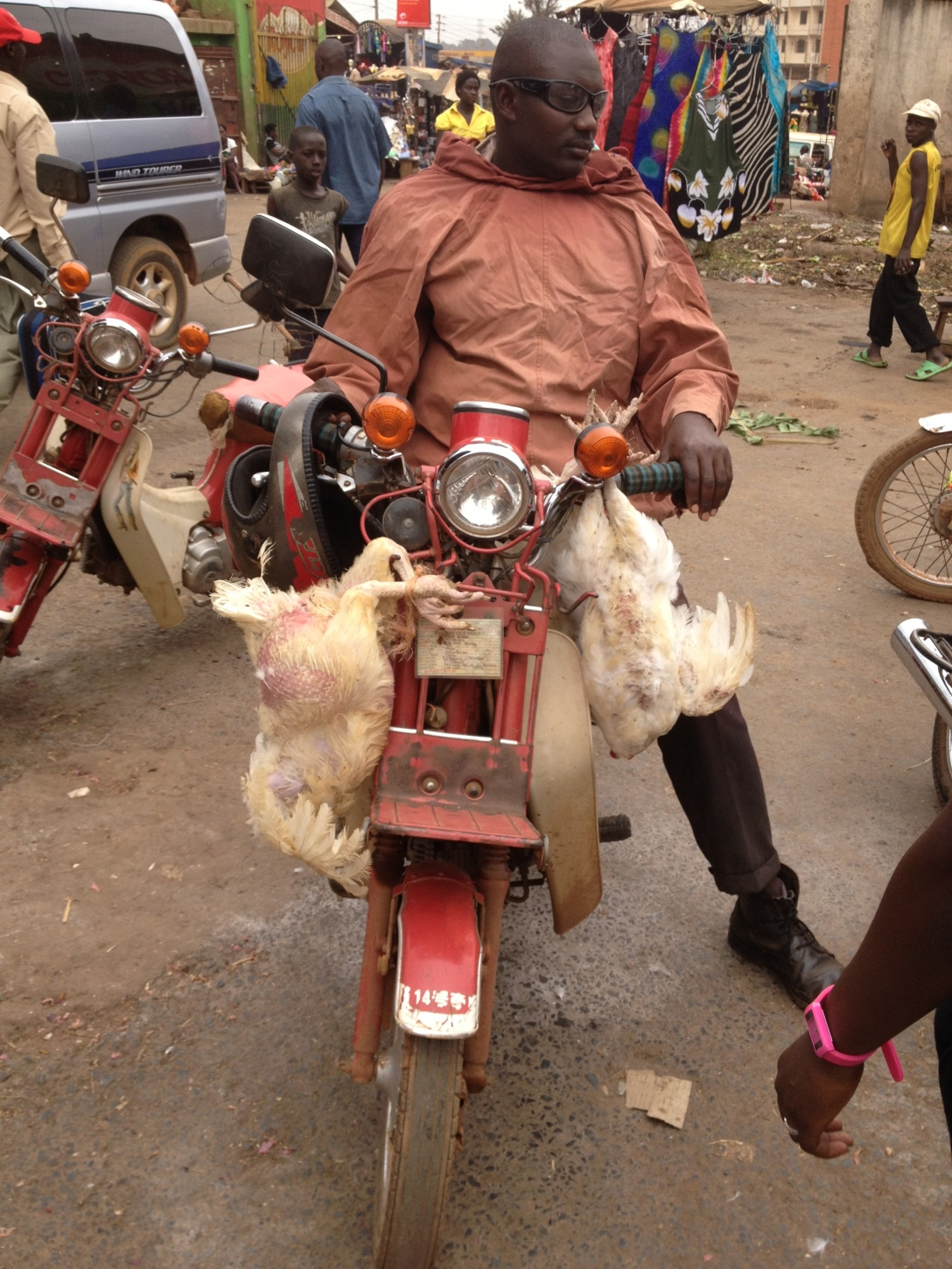boda with chickens
