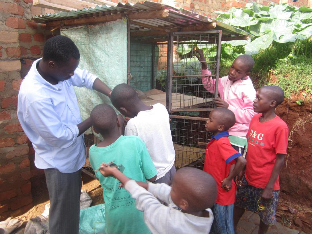 These are the kids and Robert setting up our new coop.