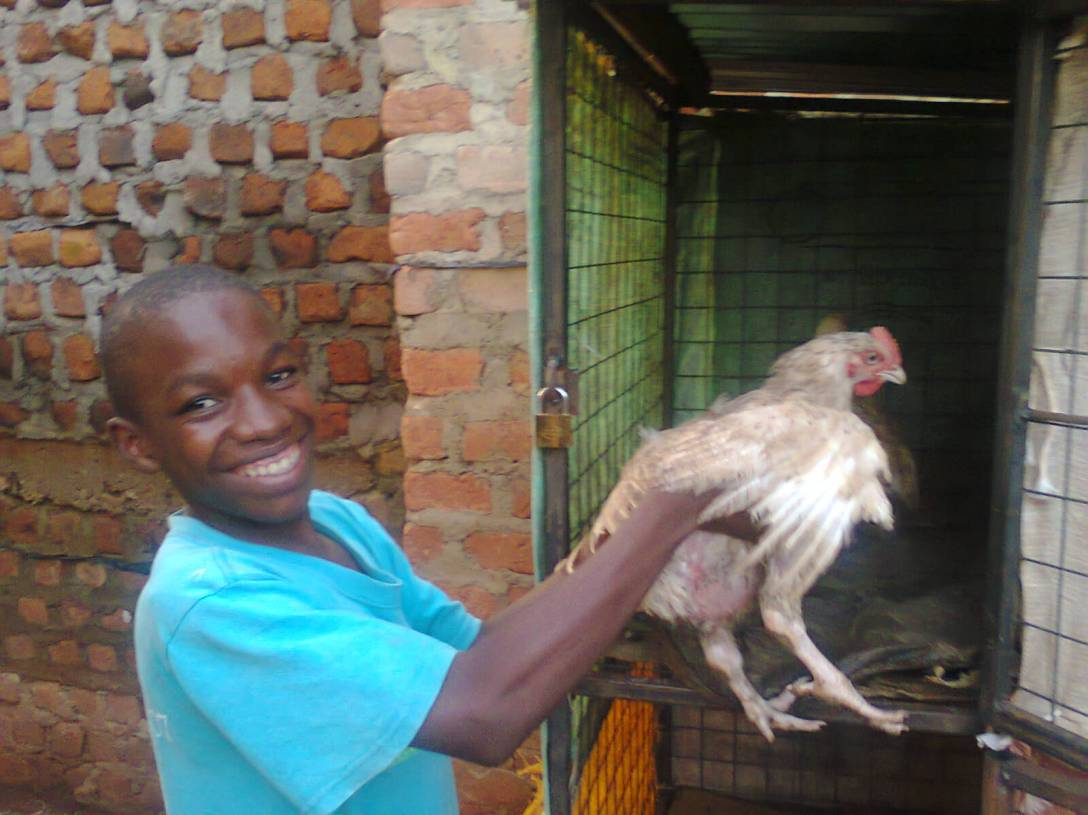 This is Ronald with one of our new chickens.