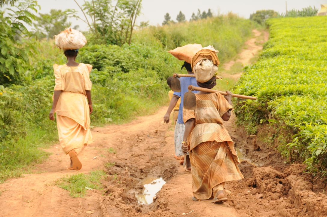 ladies walking with their bundles and garden tools.
