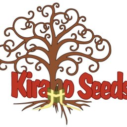Why is Kirabo Seeds a UNIQUE orphanage?